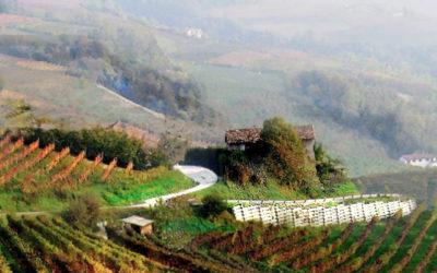 Italia – Produttori di Govone