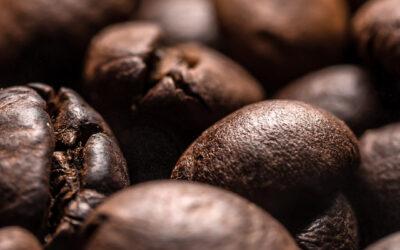 Etelä-Afrikka – Wellington / Coffee House Pinotage