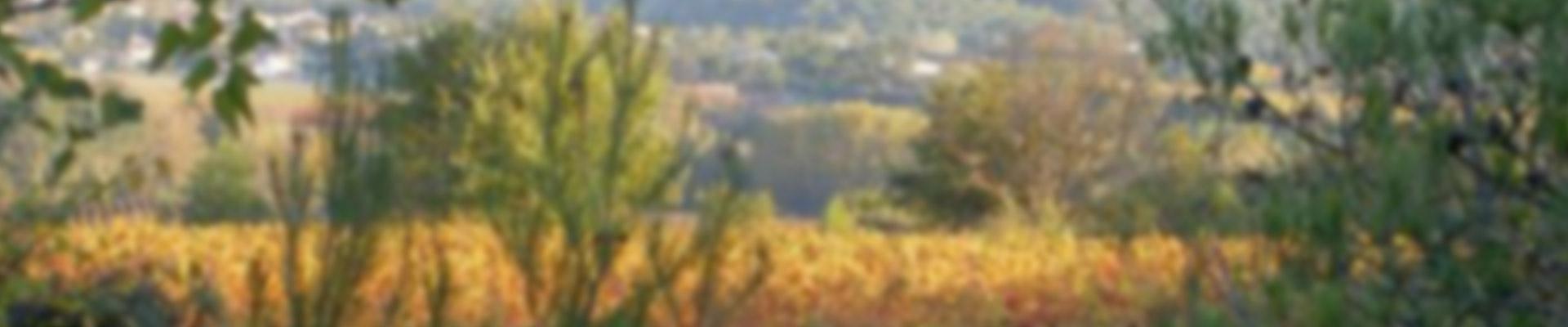 Domaine de Saint-Just